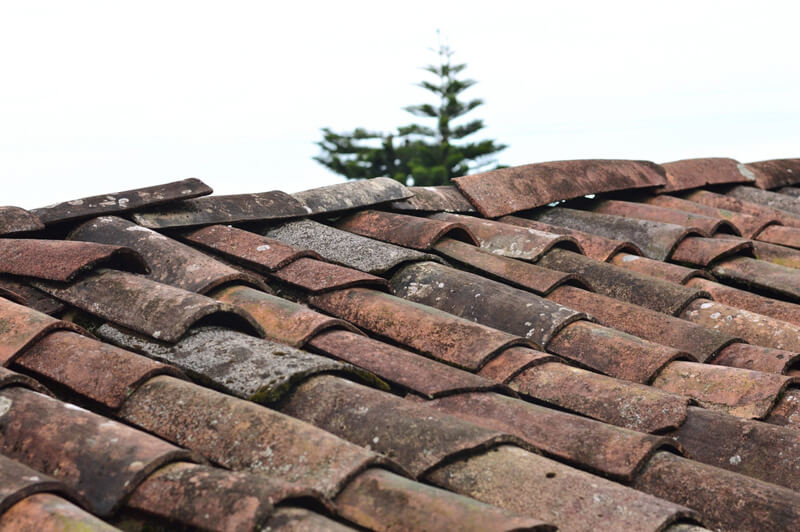 Top Signs That Your Roof Is In Need Of Repair